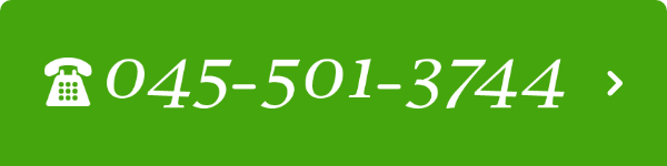 045-501-3744